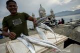 Ikan Layur Palu Orientasi Pasar Ekspor