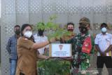 Satgas TNI tanam 500 pohon pepaya California di perbatasan RI-PNG