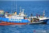 Pengamat: Teknologi deteksi pencurian ikan perlu jadi fokus anggaran di Kementerian KKP