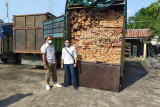 Gakkum KLHK tahan Direktur CV BEA asal Pekanbaru terkait kasus kayu ilegal