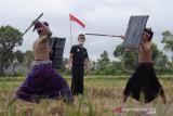 Pertunjukan Peresean daring meriahkan HUT ke-76 RI digelar di Lombok