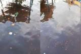 Bupati Kotim minta kebocoran CPO di Sungai Mentaya kembali dibersihkan