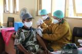 Bupati: Penambahan kasus harian COVID-19 di Kulon Progo turun