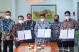 Sinergi BUMN: PLN-PTBA-KAI Amankan Pasokan Batu Bara untuk Ketahanan Ketenagalistrikan Nasional