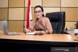 Insentif tambahan PPN bantu pelaku usaha sektor ritel