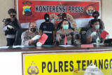 Dua pencuri kayu manis milik Perhutani ditahan