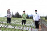 Kemnaker kembangkan kejuruan pariwisata di  Kabupaten Solok