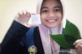 Mahasiswa UNESA kembangkan plester hidrogel ekstrak daun sirih hijau