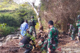 Satgas TNI Yonif 751 bersama warga Walesi Papua tanam pohon di aliran sungai