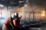Kerugian kebakaran Pasar Baso Agam Rp2,5 miliar