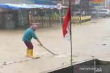 Banjir di Tanjungpinang, ular naik ke jalan raya