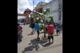 Sopir dum truk tanam pohon pisang di jalan BLK International Lotim