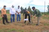 Mahasiswa Kukerta Balek Kampung UNRI serahkan 1000 bibit cabe ke Suku Sakai