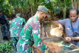 TNI bantu warga perbatasan RI-PNG mengolah sagu