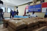 BNNP Lampung gagalkan 50 paket ganja yang dikendalikan dari lapas