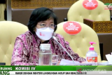 Menteri LHK: AMDAL TN Komodo akan diserahkan ke UNESCO