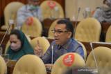 DPR pertanyakan pembabatan hutan lindung di Kabupaten Manggarai Barat