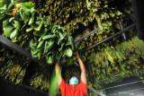 Lindungi konsumen, BSN rumuskan standar produk HPTL