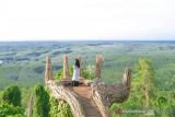 Pemkab Bulukumba kembangkan hutan karet jadi objek wisata