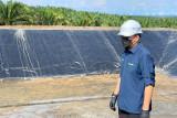 PTPN V targetkan empat Pembangkit Tenaga Biogas beroperasi tahun ini