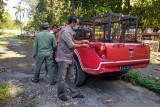 Remaja tewas diterkam harimau di Teluk Lanus Siak, BBKSDA pasang jebakan