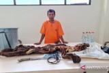 KLHK gagalkan penjualan kulit harimau dan janin rusa di Kuansing