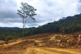 KPH: Persemaian modern Labuan Bajo tak rusak mata air