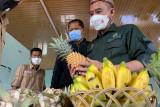Petani milenial di Kalteng bagian masa depan ketahanan pangan Indonesia