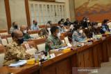BP Batam bahas realisasi anggaran bersama komisi VI DPR RI