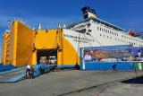 PON Papua -Pemprov Papua apresiasi kedatangan 316 unit bus operasional PON XX