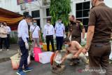 Kejari Palembang musnahkan senjata  api rakitan dan amunisi aktif