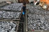 Pengeringan Ikan Terkendala Cuaca
