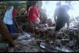 Puluhan rumah di Mamasa Sulbar hanyut terseret banjir
