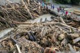 Warga Sigi  diminta lakukan penghijauan cegah banjir bandang terulang