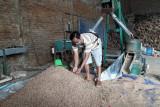 Limbah kayu disulap jadi bahan  bakar alternatif