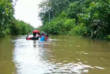 10.409 warga di Pulau Malan Katingan terdampak banjir