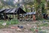 Tanah adat terancam, warga Segun komit tak terjebak janji manis investor sawit