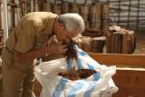 Gubernur Jateng minta pabrik rokok percepat beli tembakau petani
