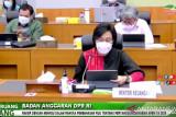 Sri Mulyani: Pemerintah berupaya keras minimalkan penyimpangan APBN 2020