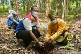 Berwisata sambil belajar di Arboretum Gambut Marsawa