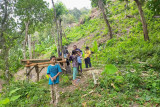 Pemdes gandeng Gapoktan kembangkan hutan Senggigi