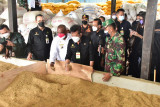 Waket 1 DPD RI apresiasi pembangunan pertanian di Papua
