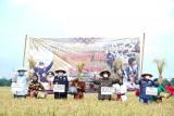 Sumsel dorong petani Banyuasin tingkatkan intensitas pertanaman dua kali setahun