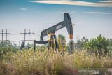 Teknologi CCUS ciptakan pengembangan  lapangan migas rendah karbon