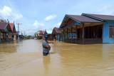 Banjir rendam 12 desa di Pulang Pisau