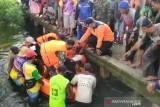 Seorang kakek ditemukan meninggal dunia di Danau Sababilah Barsel