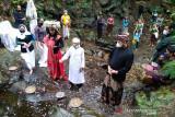 Festival Lima Gunung kala pandemi ungkap eksistensi seniman-petani
