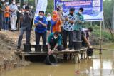 Diskannak OKU tebar 9.000 benih ikan di Sungai Ogan