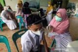 Wapres Ma'ruf dorong kolaborasi pentahelix percepat vaksinasi COVID-19