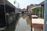Puluhan rumah di Rangkasbitung dilanda banjir